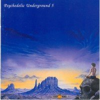 "V/A ""PSYCHEDELIC UNDERGROUND, VOL. 5"" (CD (LTD. ED.))"