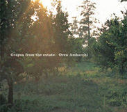 AMBARCHI, OREN - GRAPES FROM THE ESTATE CD