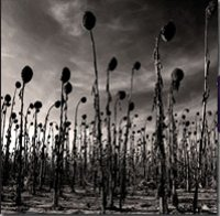 "DEAD CAN DANCE ""ANASTASIS"" (2LP)"