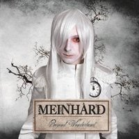 "MEINHARD ""BEYOND WONDERLAND"" (CD)"