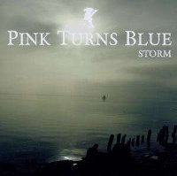 PINK TURNS BLUE - STORM (CD)