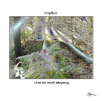 OOPHOI - I HEAR THE WOODS WHISPERING CD-R