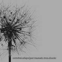 "CONTROLLED COLLAPSE ""POST TRAUMATIC STRESS DISORDER"" (CD)"
