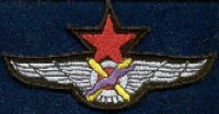 "PILOTO DE CAZA ""P-13"" (PATCH)"