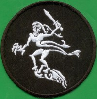 "11TH PANZERDIVISION ""P-26"" (PATCH)"