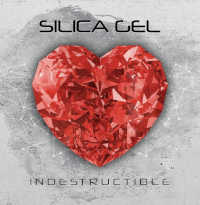 SILICA GEL - INDESTRUCTIBLE CD